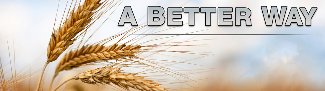WheatSlider
