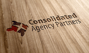 Consolidated Agency Partners